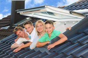Dachfenster 101010